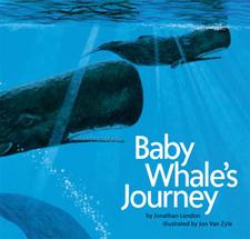 Babywhalesjourney_3